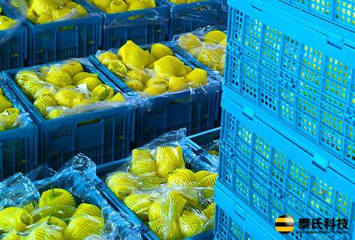 推广标准化折叠周转筐 提升农村商贸流通效率